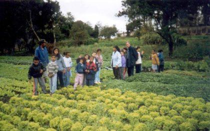 Horta Orgánica