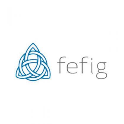 FEFIG